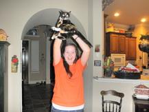 Cat on Dome - Addison R.