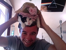 Cat on Dome - Alex W.