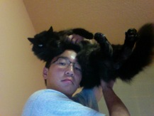 Cat on Dome - Phillip K.